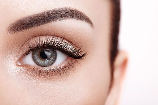 Lash and Brow Course